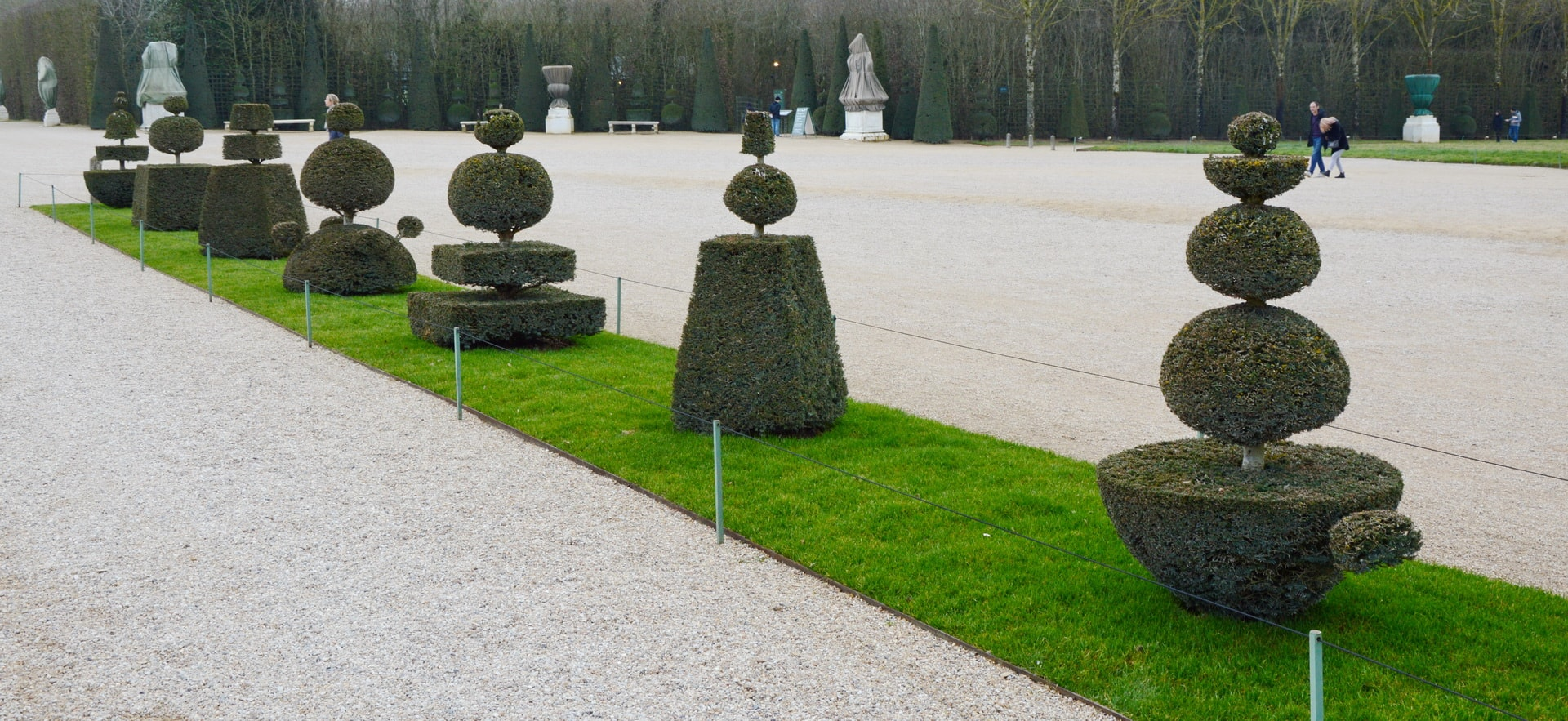 You can't find two alike trees in the gardens of the Versailles Palace